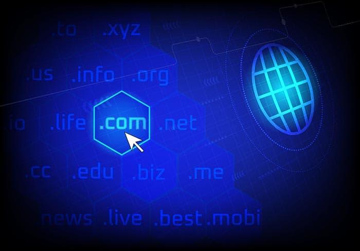 การเลือกชื่อโดเมน โดเมนเนม domain name, .com .net .org