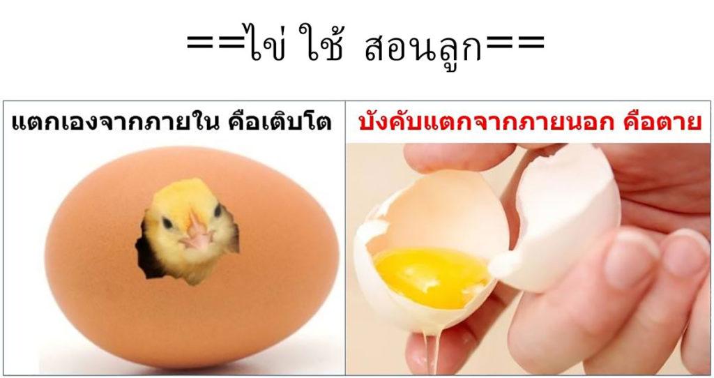 ไข่ ใช้ สอนลูก