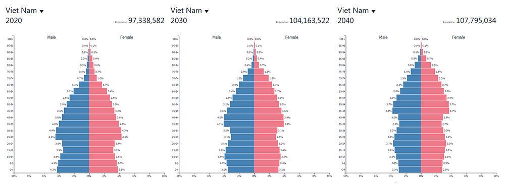โครงสร้างประชากรเวียดนาม-2020-2030-2040