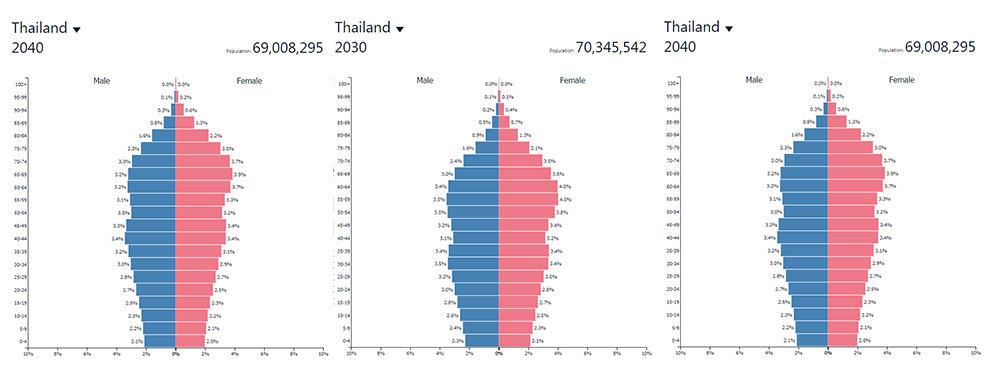 โครงสร้างประชากรไทย 2020 2030 2040